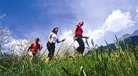 nordic-walking-grass tn