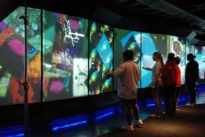 Ourspace, Te Papa Tongerewa, Museum of New Zealand, Wellington