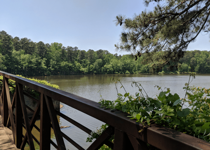 Umstead Park walk hike