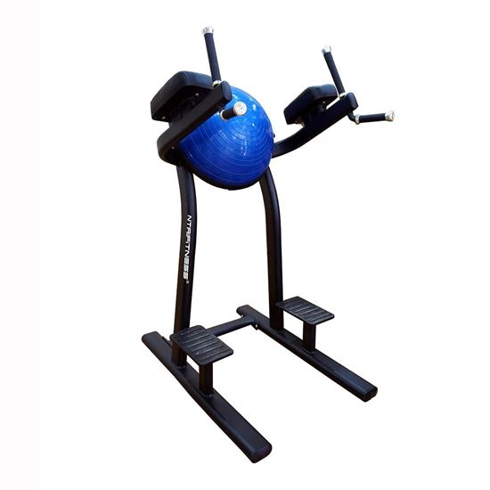 Leg Raise Machine For Sale Buy Leg Raise Online