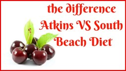 south beach atkins