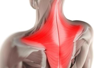 trapezio muscolo