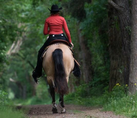 Equipaggiamento equitazione