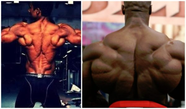 「bodybuilding back muscles」的圖片搜尋結果
