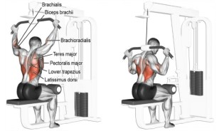 Ligandrol Strengthens neck muscle tendons with behind the neck Lat pulldown
