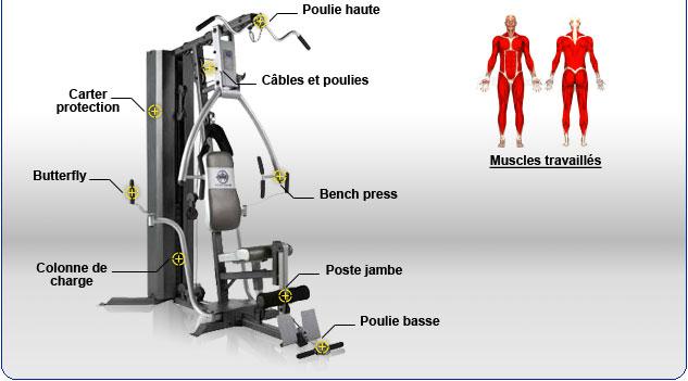 FitnessBoutique Gt La Marque Rfrence Du Fitness Et