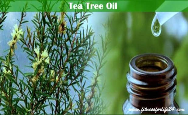 tea tree oil