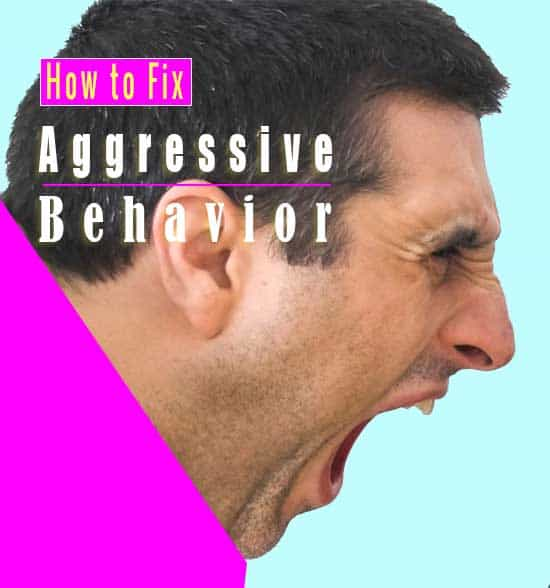Causes of Aggressive Behavior