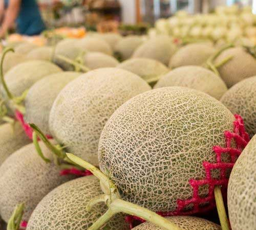 Muskmelon Benefits