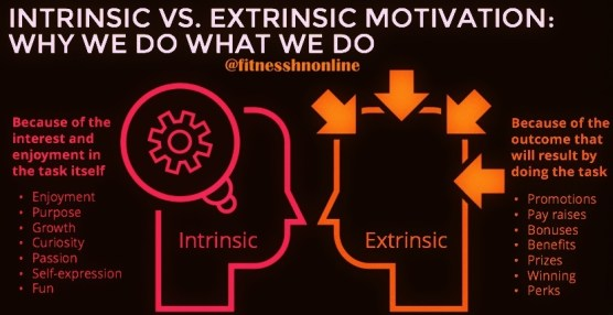 Fitness HN - Intrinsic and Extrinsic Motivation