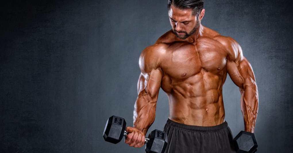 20 Muskelaufbau-Tipps 1