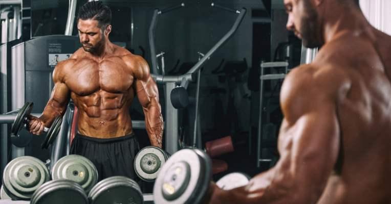 Guide für Definition, Muskelaufbau und Fettverbrennung 1