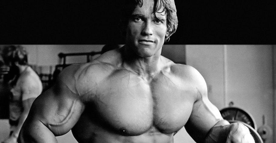 Programme Arnold Schwarzenegger