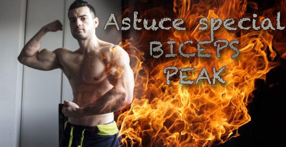 biceps peak