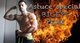 Biceps peak : astuce musculation biceps