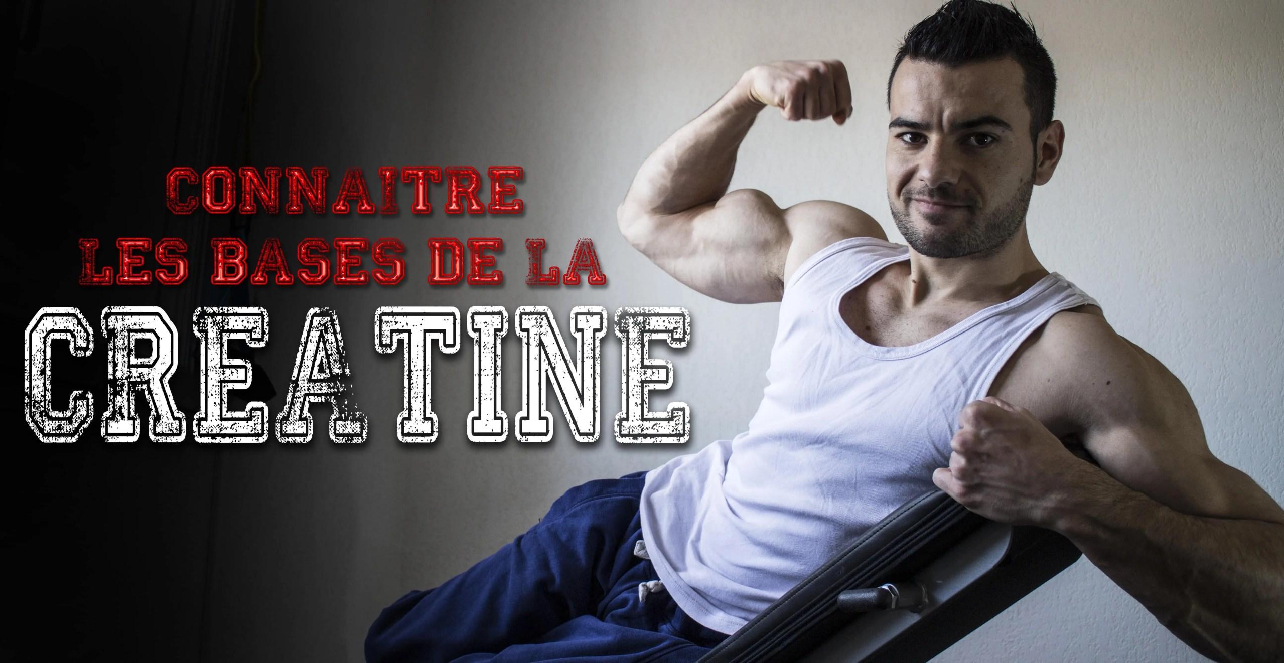 CRÉATINE musculation
