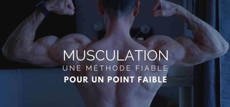 🔒Point faible musculaire, la solution radicale