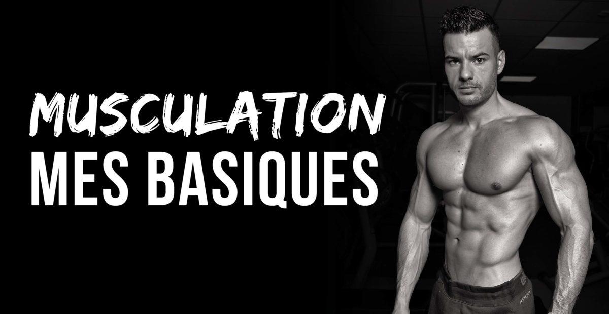 base musculation