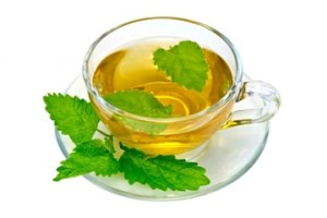Nettle leaf extract tea
