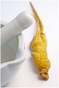 Benefits of Panax ginseng