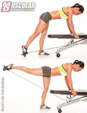 Straight-leg Standing Cable Extensions/Band Extensions