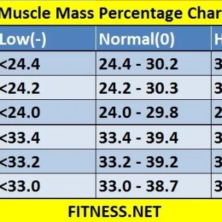 Muscle mass percentage chart archives fitness sports