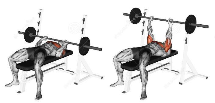 bench press tight grip - triceps bodybuilding
