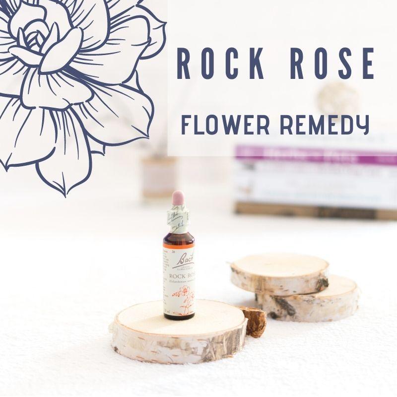 ROCK ROSE - pomoc dla psa który wpada w panikę
