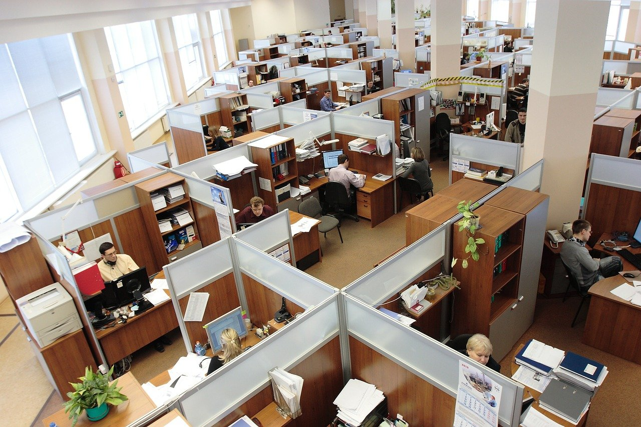 Office Cubicles With People at Work