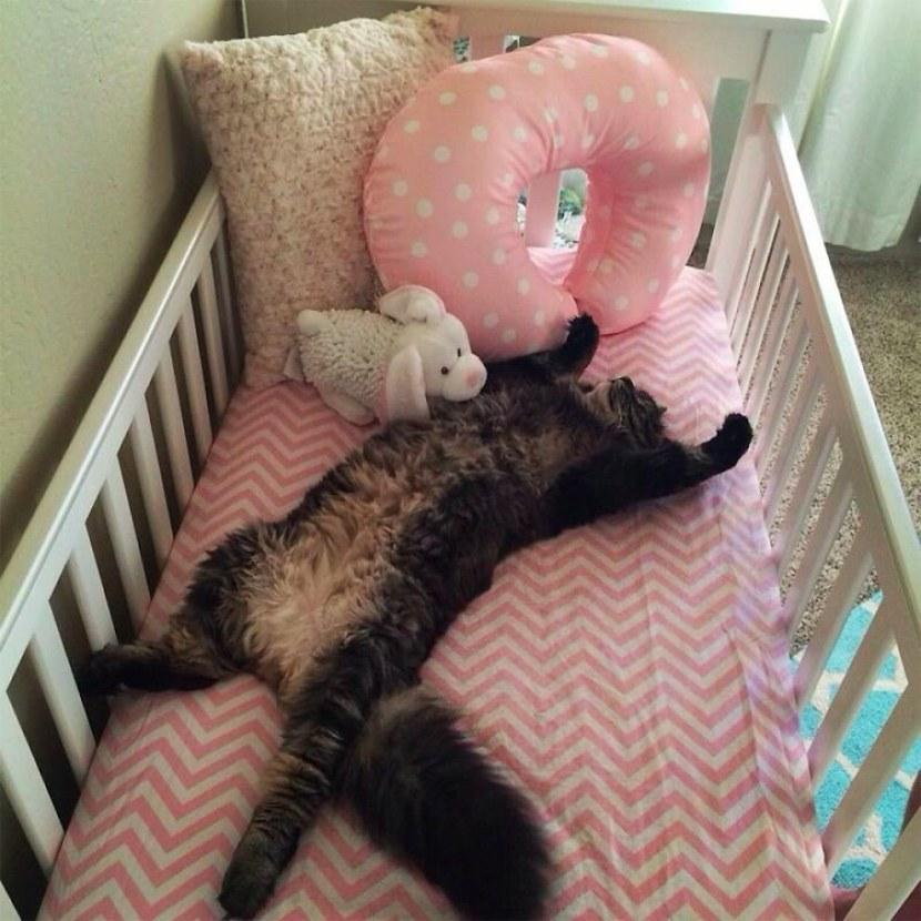 kat eigen zich babykamer toe