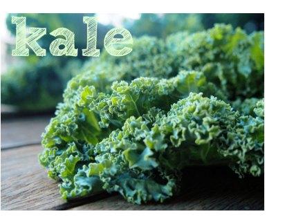 kale-chou-frisé