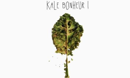 Chips de Kale : «kale» belle découverte !