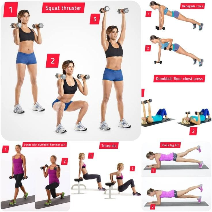 Circuit training: 20 minutes total body circuit workout plan - FITZABOUT