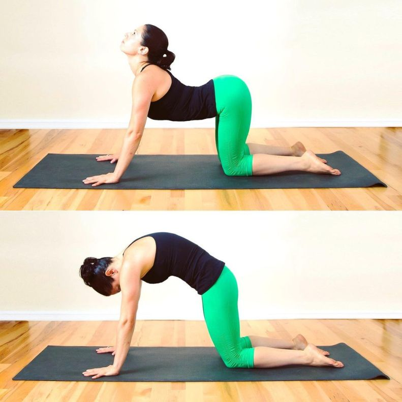Cat-Cow Stretch with Ujjayi for warm-up to get in baby crow pose - fitzabout