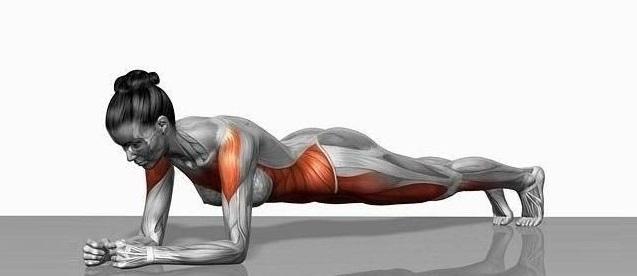 planks - fitzabout