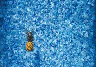 pineapple-1149456_1280