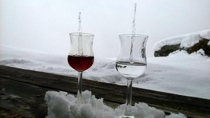 Mirto rosso e mirto bianco con stalattiti di ghiaccio