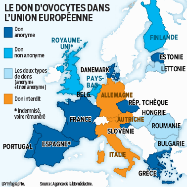 carte don ovocyte