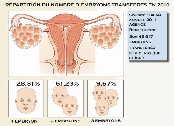 Le choix de l'embryon