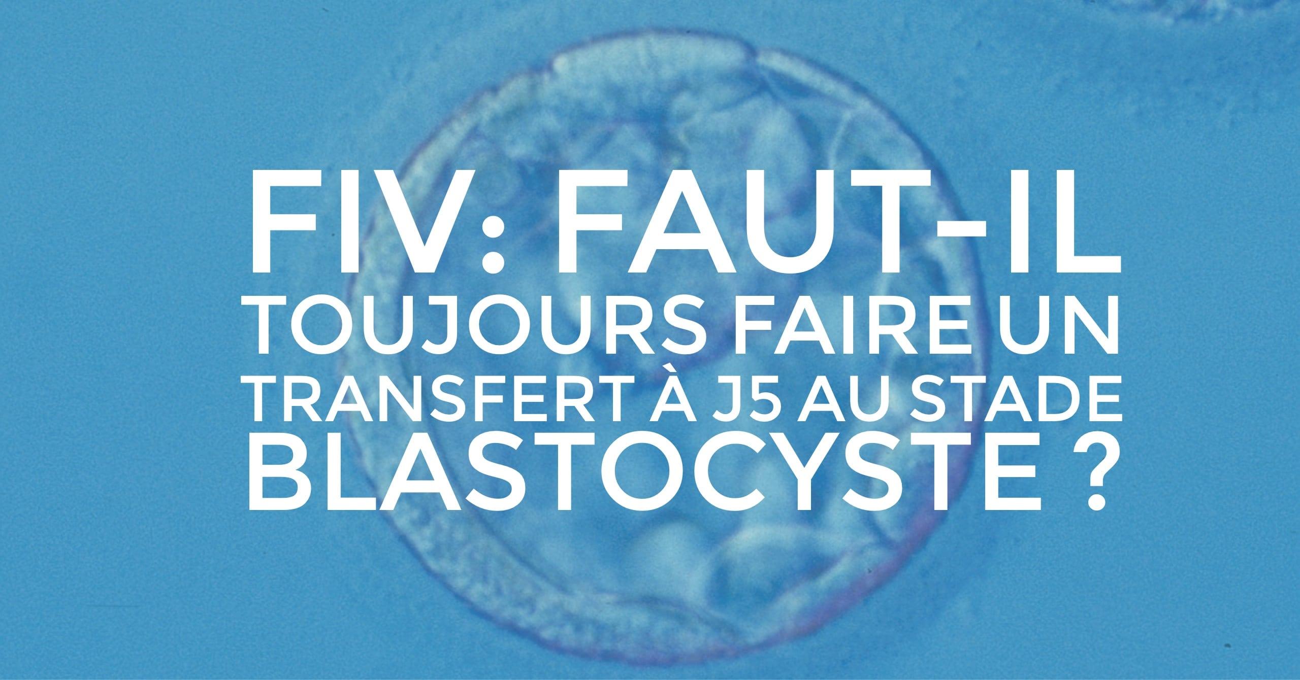fiv blastocyste enceinte