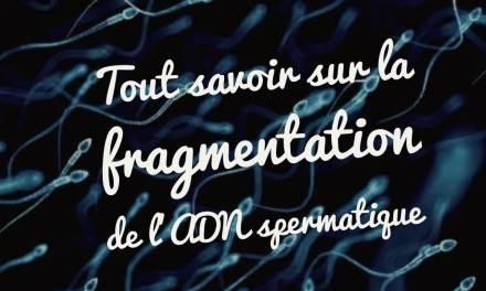 Tout savoir sur la fragmentation de l'ADN spermatique