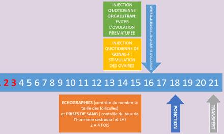 Le protocole sur cycle naturel
