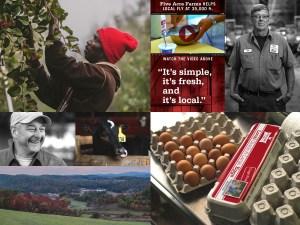 Five Acre Farms - website