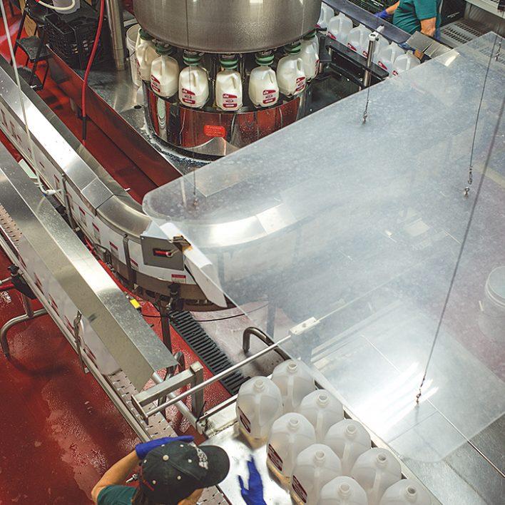 Milk Production - Five Acre Farms