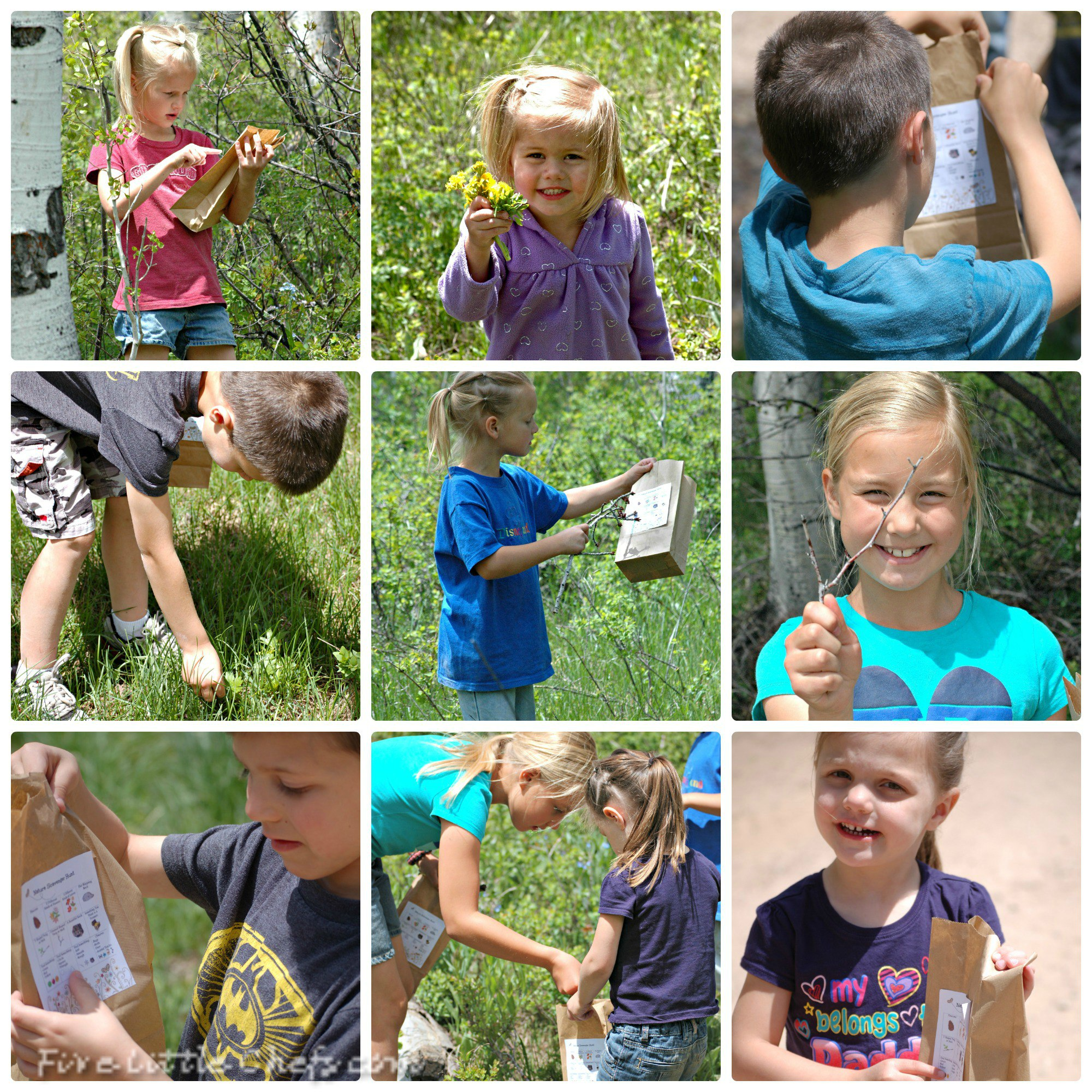 Nature Scavenger Hunt For Kids Free Printable