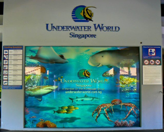 Underwater-world-3