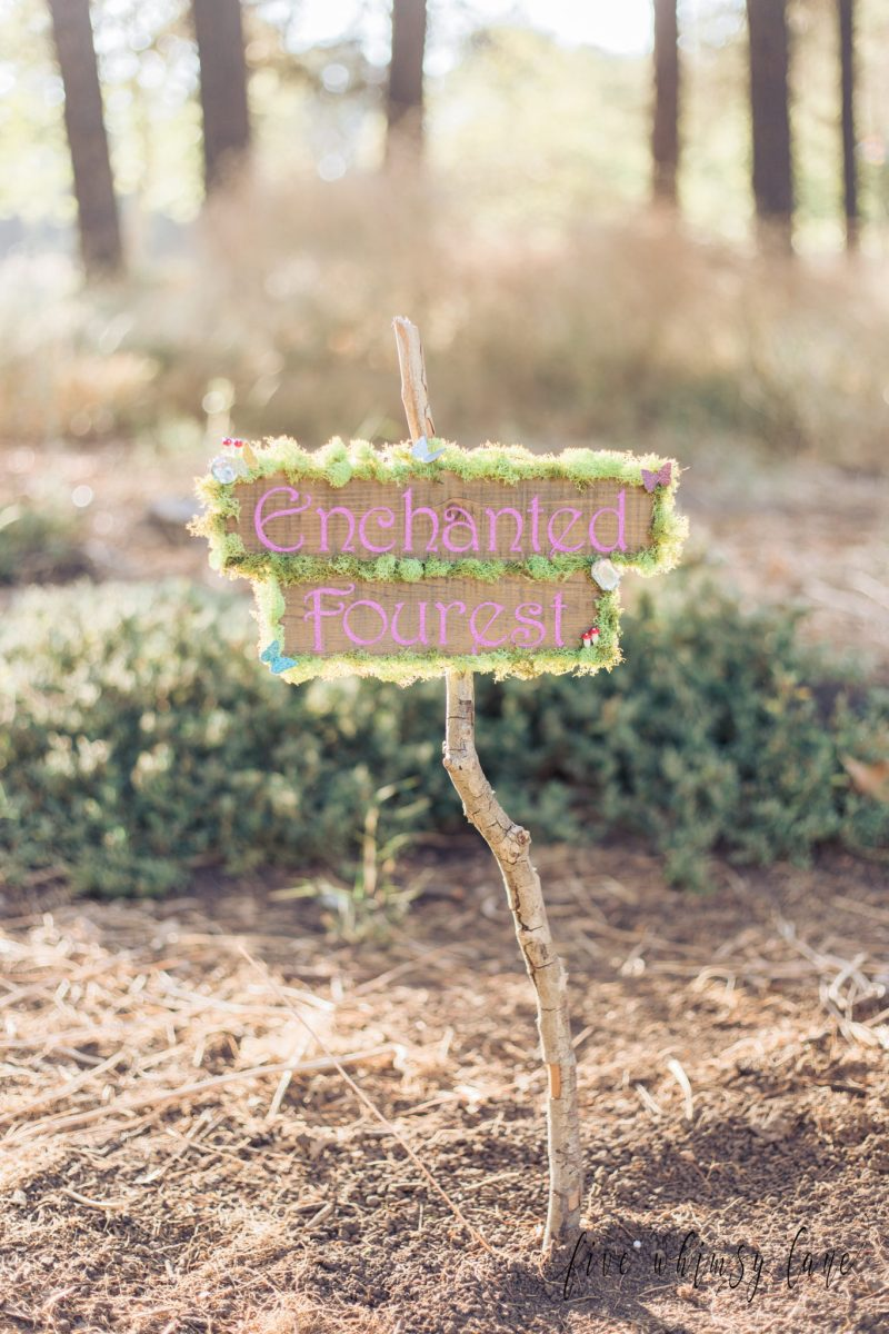 "Enchanted ""Fourest"" Fairytale Session"