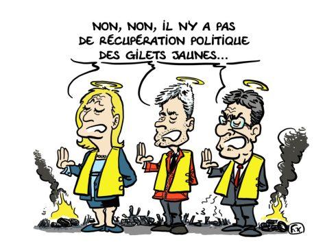 """Résultat de recherche d'images pour """"gilets jaunes recuperation politique"""""""