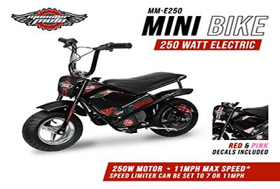 Monster Moto MM-E250-PR best mini bike for adults