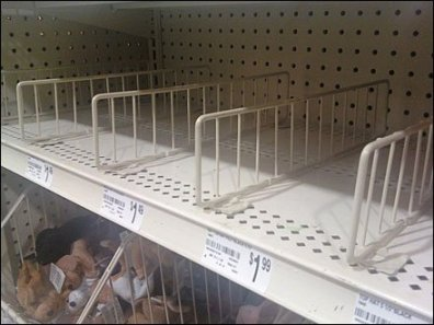 Fencing as Shelf Divider
